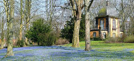 Bild von Hannover: Scilla-Blüten auf dem Lindener Berg-Friedhof