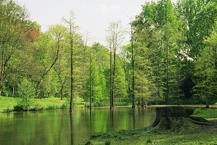 Bild von Dortmund: Der Rombergpark