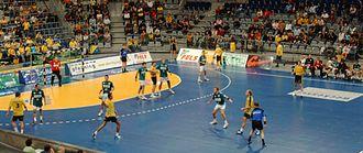 Bild von Hessen: Handballspiel HSG Wetzlar gegen die Rhein-Neckar Löwen