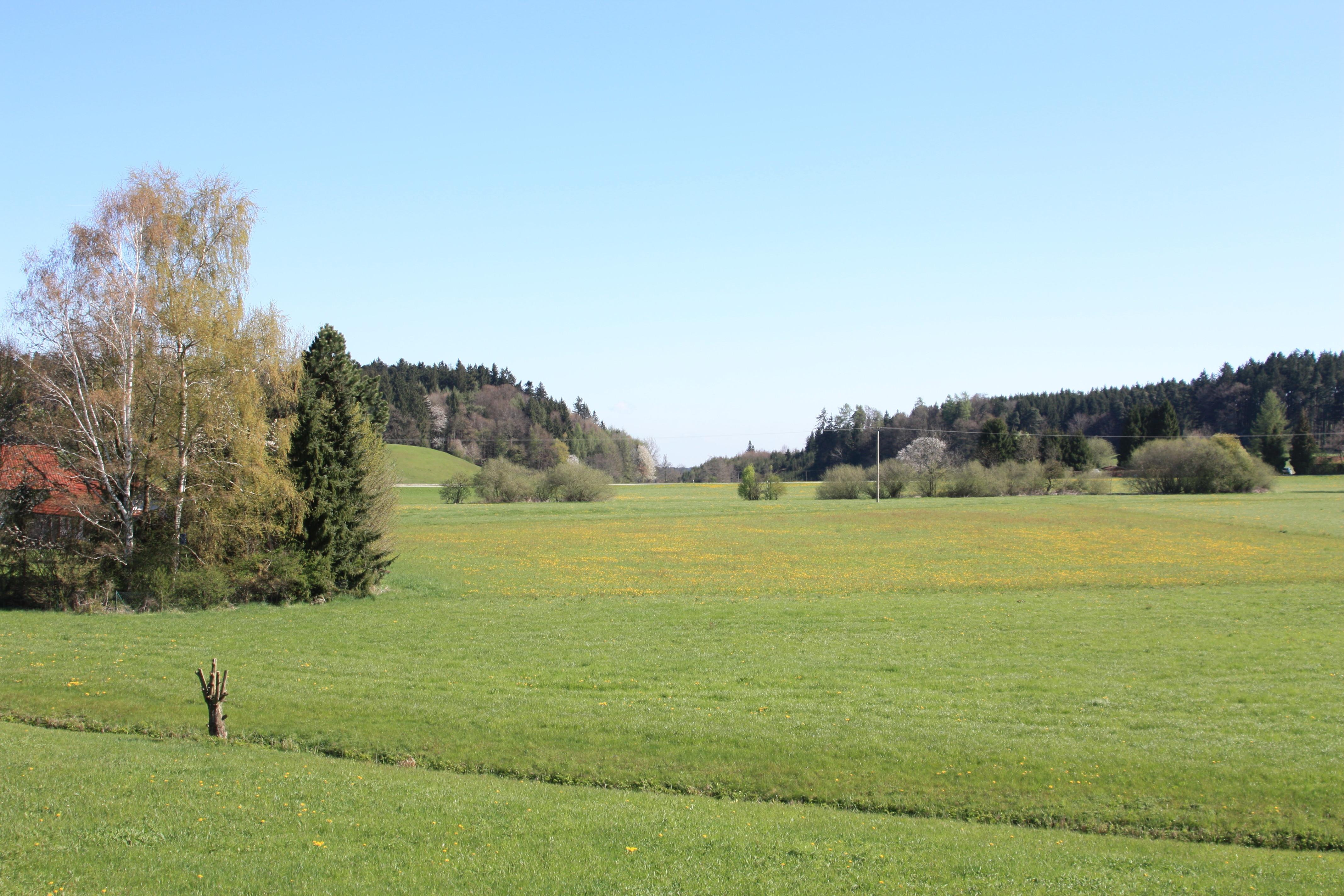 Bild von Rosenheim (Landkreis): ROBabenshamKirchloibersdorf3